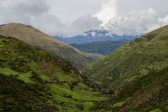 Wild Andes-21