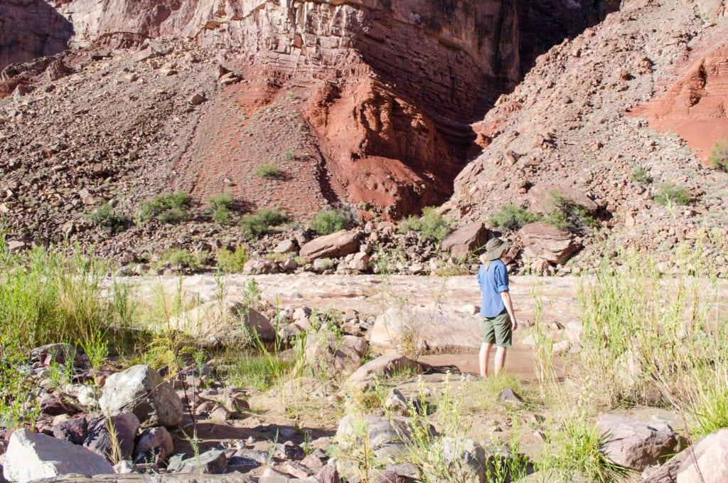 Grand-Canyon-6-1024x679.jpg